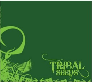Tribal Seeds – Tribal Seeds (2008)