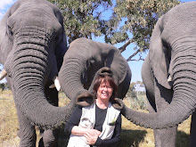 Me being ravished by elephants in Botswana