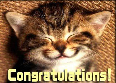congratulations+cat.jpg
