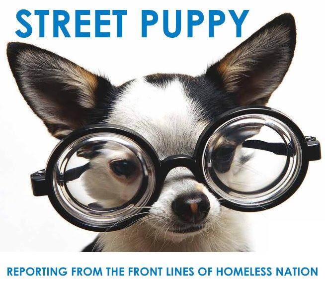 Street Puppy