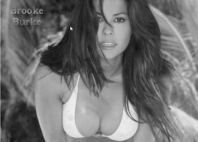 Hot Gallery Of Brooke Burke
