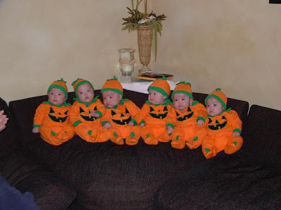 Pictures Of Six Cute Little Amigos In Orange