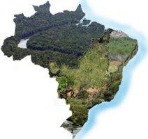 Biomas do Brasil e suas caracteristicas