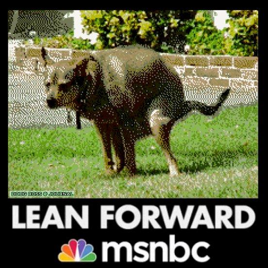 lean forward dog