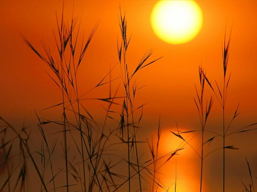 http://2.bp.blogspot.com/_osL5o7rlTeg/S76b7fV06VI/AAAAAAAAIs4/2murdVXmtIY/s1600/sunset.jpg