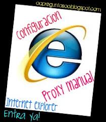 Proxy Manual Internet Explorer