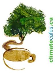 Climate Cafes