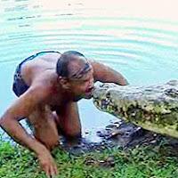 croc-trainer