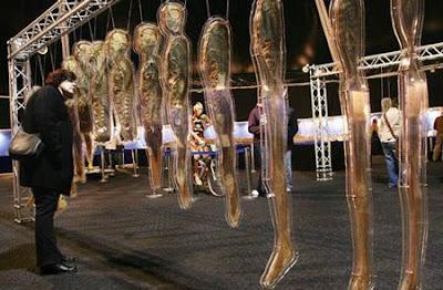 The Amazing Human Body exhibition