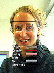 Facial analysis software