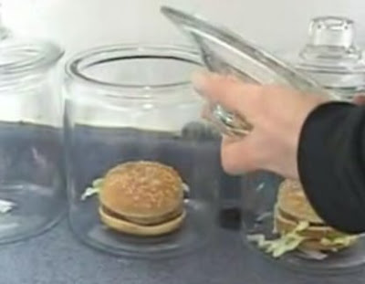Guy conducts experiment on fastfood