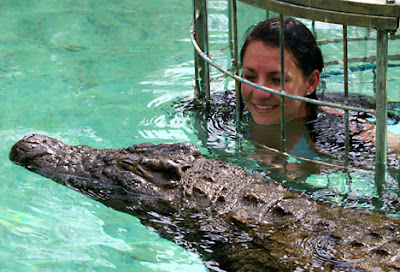 Swimming with killer crocodiles