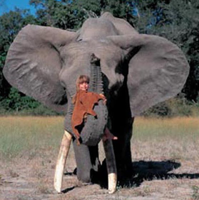 Tippi with an elephant