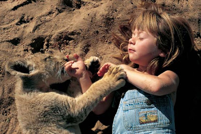 Tippi playing with a lion