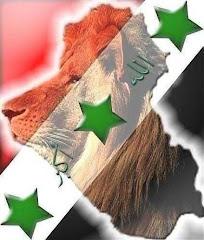 اليوم الثالث على التوالي معسكرنادي الديوانية في بغداد الحبيبة