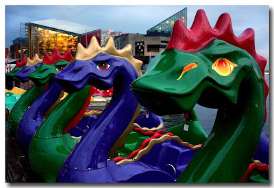 Dragon Boats - Baltimore Inner Harbor