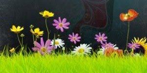 flores esencias florales