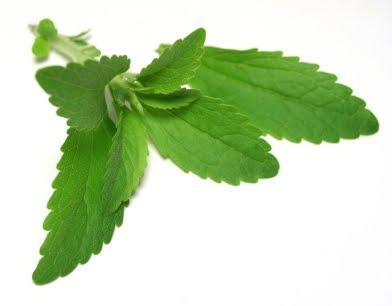 stevia efectos secundarios