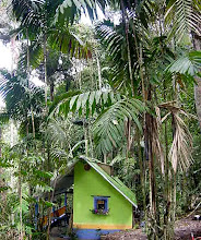 My cabin at Gabante Rain Forest