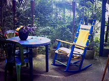 A view of my rocking chair at the forest