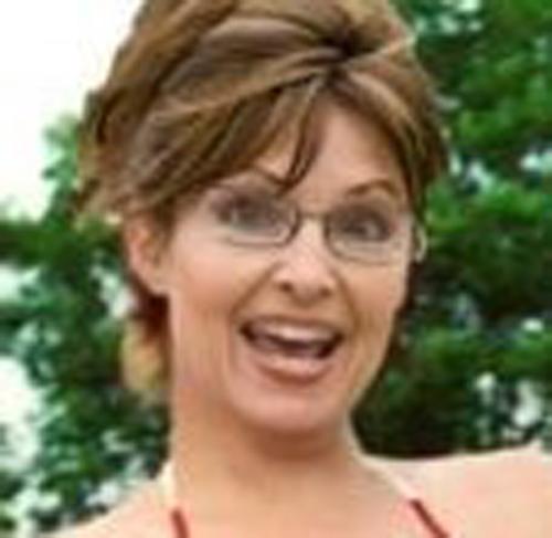 Bikini-clad Sarah Palin a hit on Cuba blog