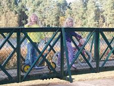 u parku, na mostu 1.