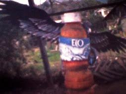 esculturacondor con botella eco de los andes