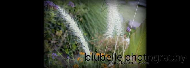 blubelle photography