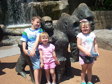Henry Doorley Zoo