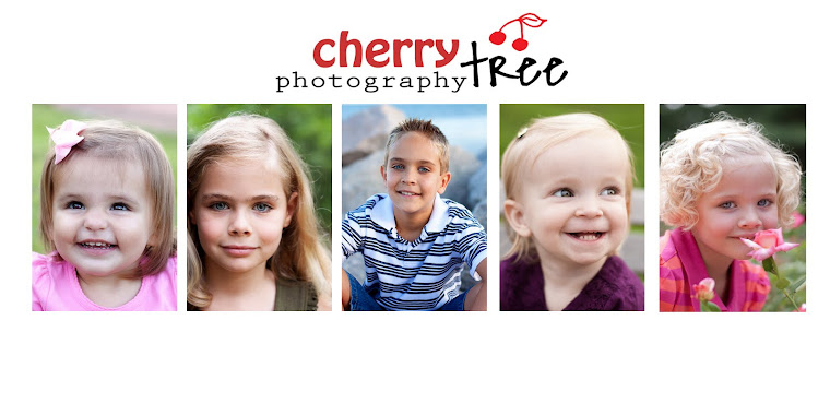 Cherry Tree Photography