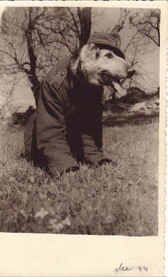 Album Foto Seragam Wehrmacht Dipakai Oleh Perempuan Anak Dan