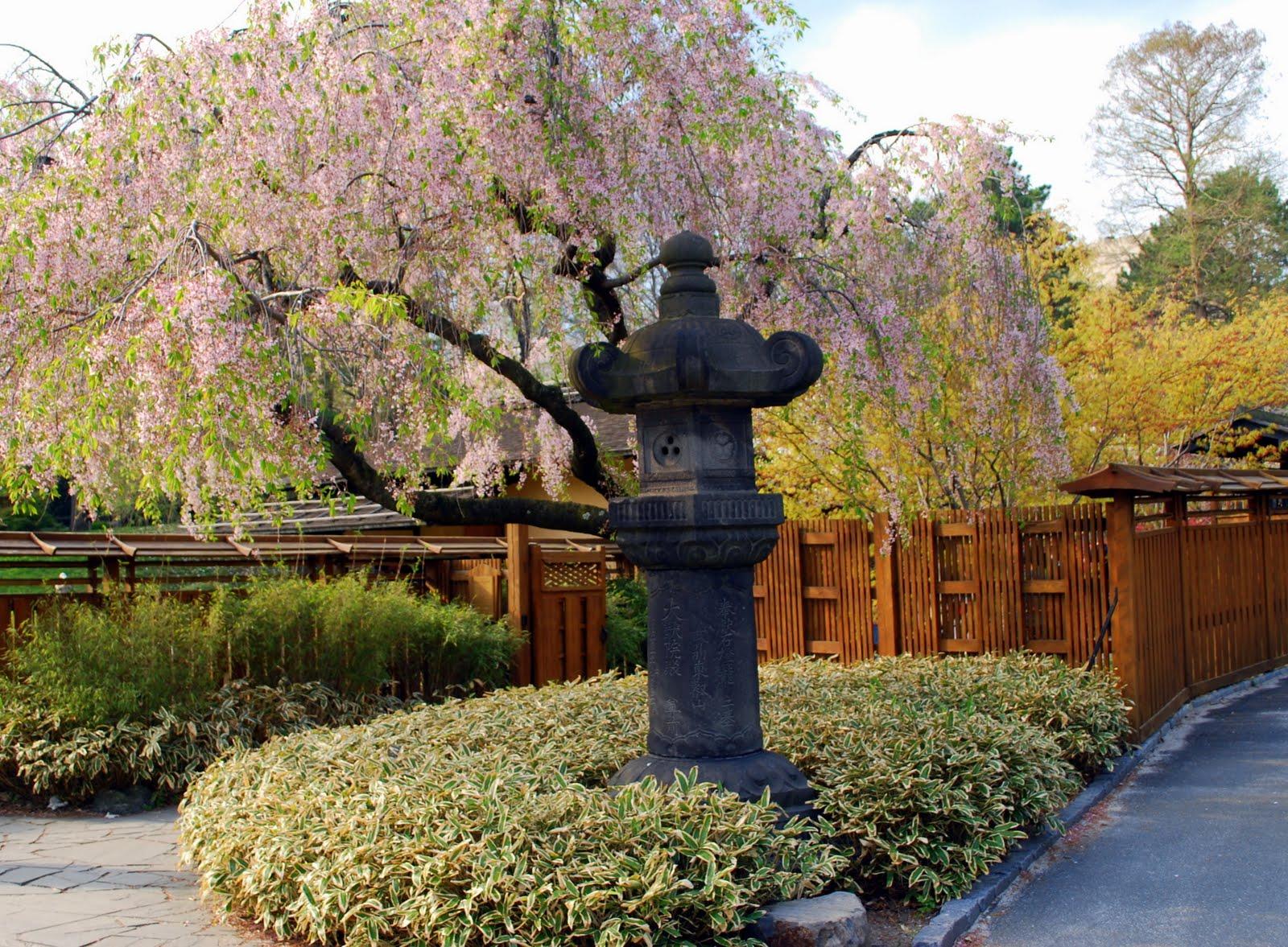 Mille Fiori Favoriti: The Brooklyn Botanic Japanese Hill and Pond Garden