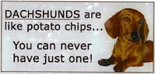 Dachshunds are like potato chips