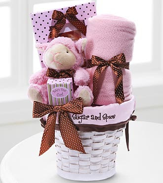 Sugar & Spice New Baby Girl Gift Set