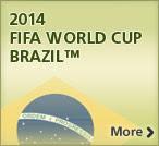 2014 - COPA DO MUNDO NO BRASIL