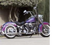 legalización de custom (reformas de motos)