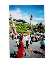 Festa da Santa Cruz