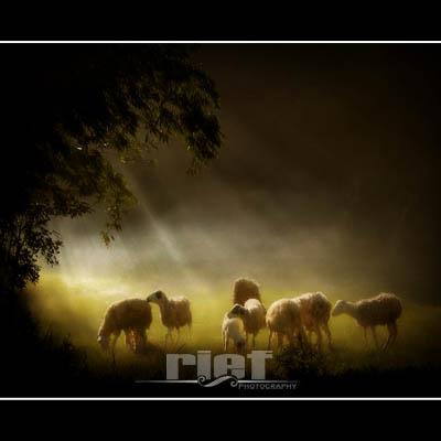 Fotografi Fotografer Indonesia Tips Foto Jogja Punya Photografer