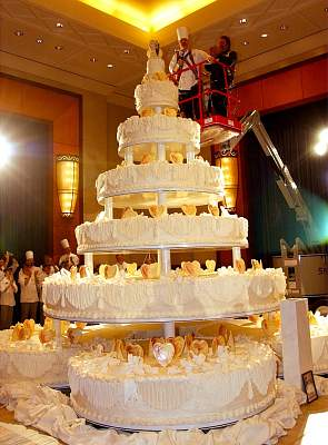 Fondant Cakes & Cupcakes: Worlds Largest Wedding Cake