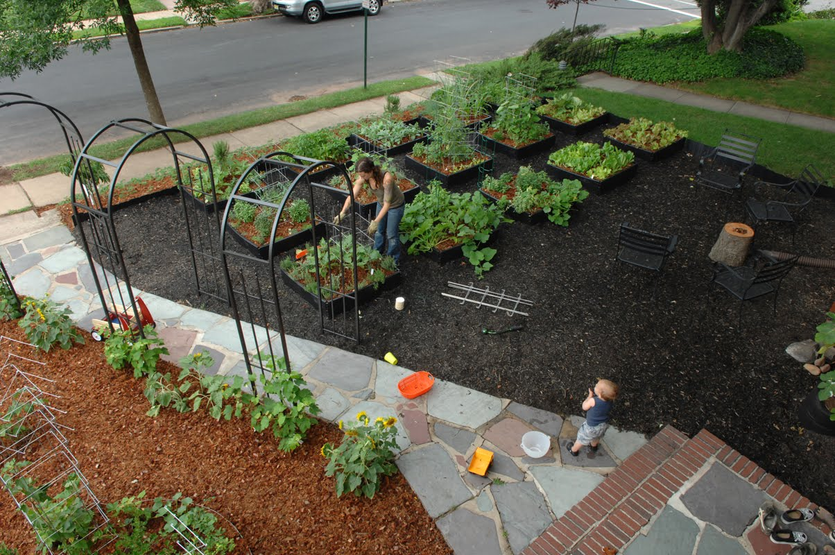 Fold fallow and plough some people don 39 t garden for Front yard garden