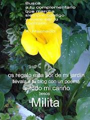 GRACIAS QUERIDA MILITA.