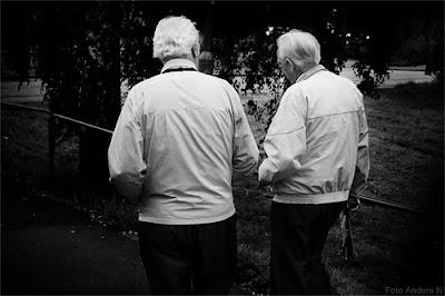 tvillingarna, twins, tvilling, gråhårig äldre man x 2, foto anders n