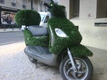 Paris Vert Bio