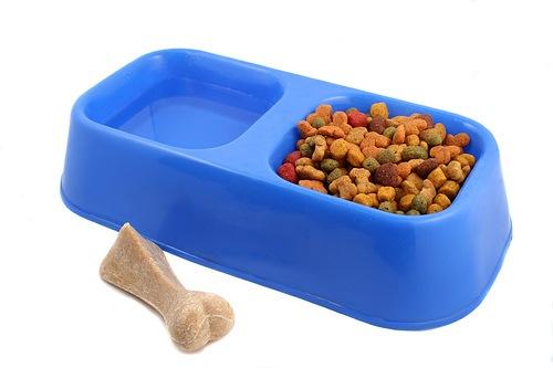 El ombligo un mes comiendo comida para perros - Comida para cachorros de un mes ...