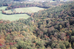 Normanskill Watershed Hills & Fields