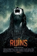 The Ruins Synopsis