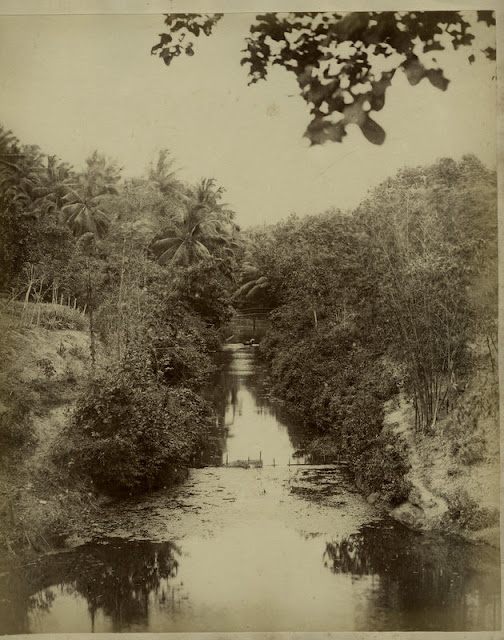 c.1890%2527s+PHOTO+INDIA+CEYLON+STREAM