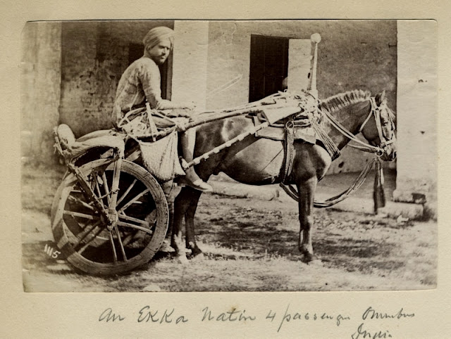c.1880%2527s+PHOTO+INDIA+AN+EKKA+-+HORSE+%2526+CART