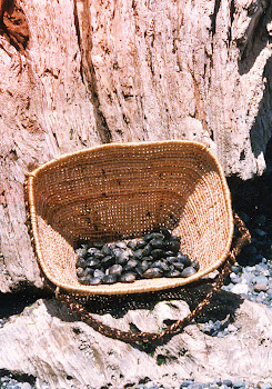 cedar root burden basket by Wilderness Basketry
