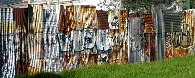 Zinc Tagging